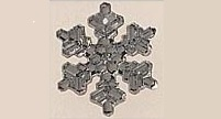 Mill Hill 12037 Medium Snowflake Crystal Bright (1vnt)