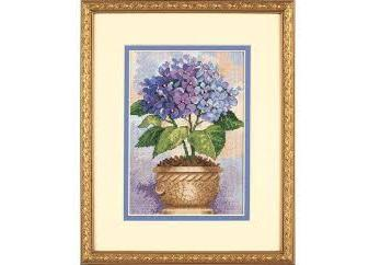 Hydrangea in Bloom (6959)