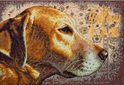 Yellow Lab (35273)
