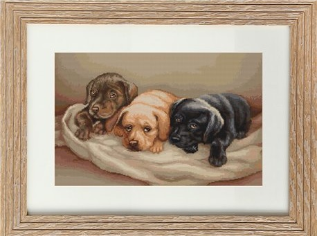 .Three Dogs (Luca-S G434)